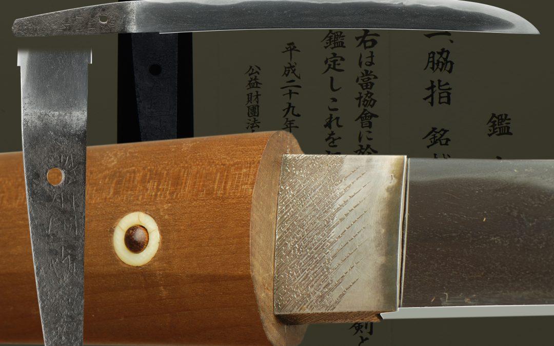 Echizen Kanenori (fss-789)
