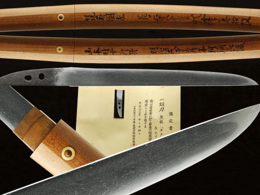 Hirado-Sa (fss-800)