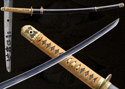 Nobumichi Gunto (fss-829)
