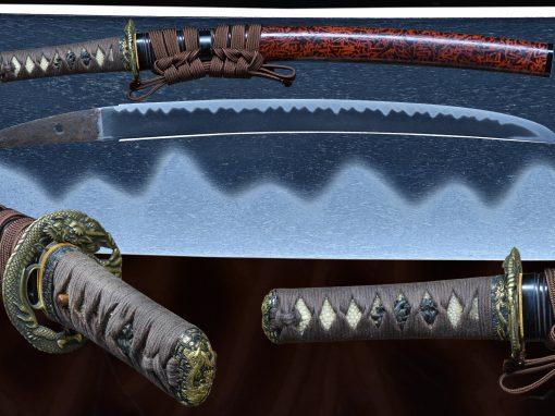 KODAI KANEMOTO (fss-868)